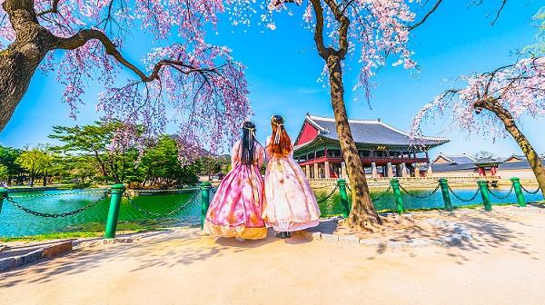 Thủ tục xin cấp visa du lịch đi Hàn quốc tự túc