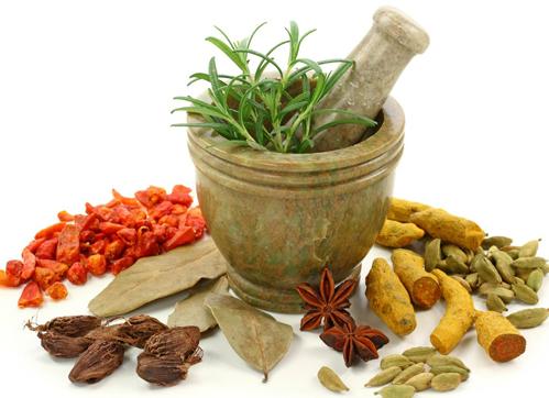 Thủ tục xin cấp giấy phép nhập khẩu dược liệu tại Hà Tĩnh
